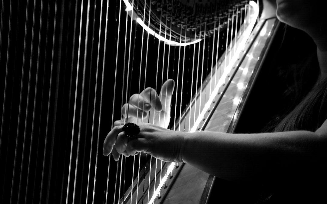 POSTPONED Special Concert – Duke Dobing (Flute) & Miriam Keogh (harp)