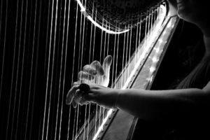 POSTPONED Special Concert - Duke Dobing (Flute) & Miriam Keogh (harp) @ St Mary's Church